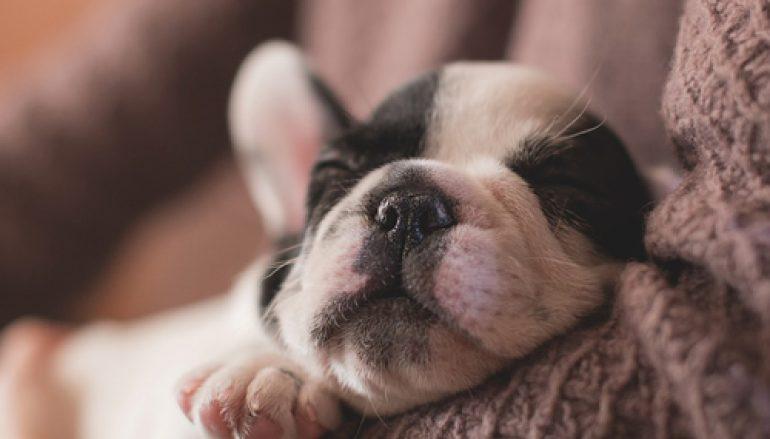 10 manieren om in slaap te vallen