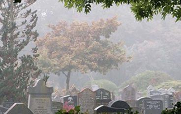Begraven natúúrlijk; Over het duurzame karakter van begraafplaatsen
