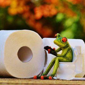 Openbare toiletten: hoognodig!