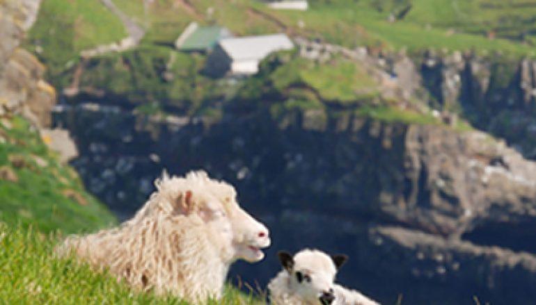 Faeröer, het laatste paradijs