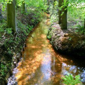 Watermolens op de Veluwe